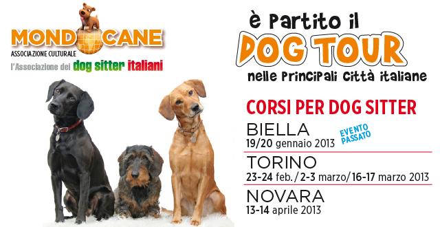 dog_tour