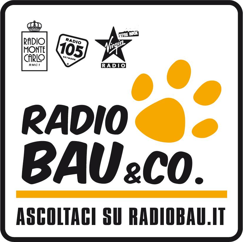 Image result for RADIO BAU